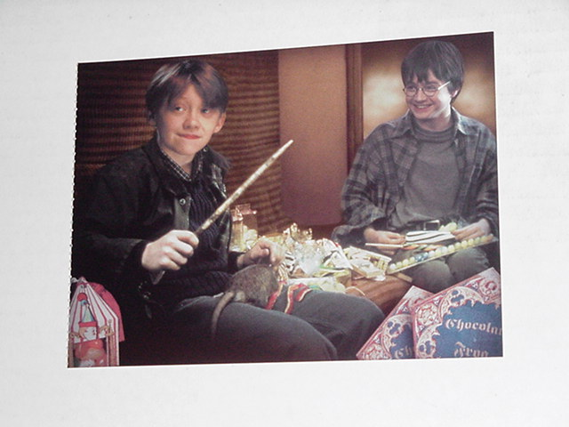 Harry Potter Sorcerer's Stone Postcard Ron Wand