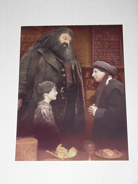 Harry Potter Sorcerer's Stone Postcard w Quirrell