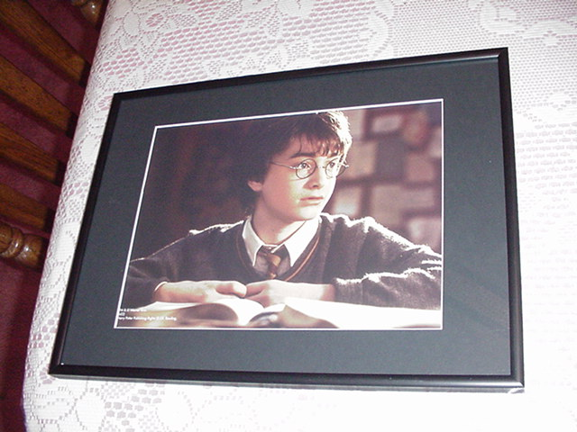 Harry Potter Poster Frame +Mat for my Posters