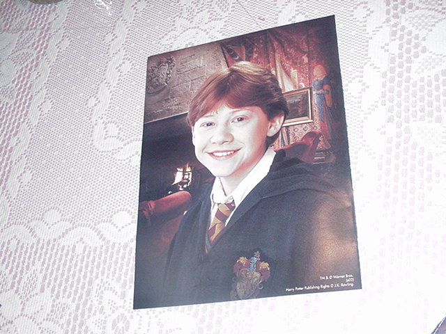 Harry Potter Poster NEW RON WEASLEY 1