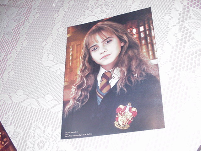 Harry Potter Poster Hermione Class Picture 2