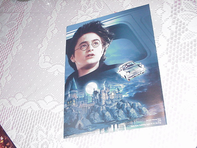 Harry Potter Poster Over Hogwarts NEW w Scar