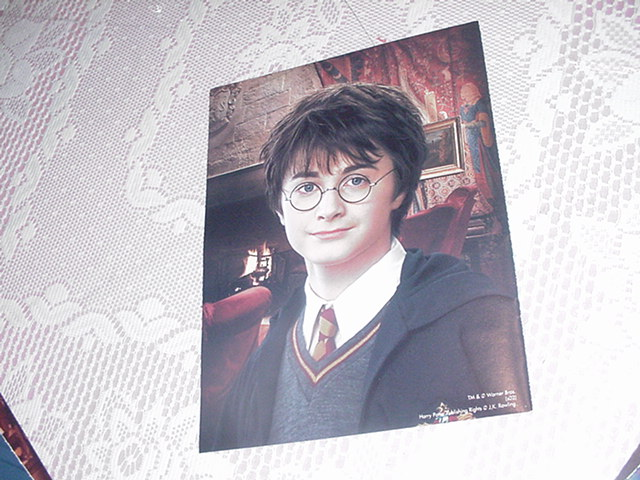 Harry Potter Poster Hogwarts Class Picture 3