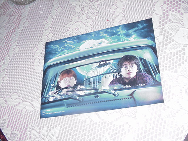Harry Potter Poster - Harry Ron + Hedwig The Owl