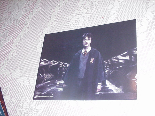 Harry Potter Poster - Alone In The Chamber 2