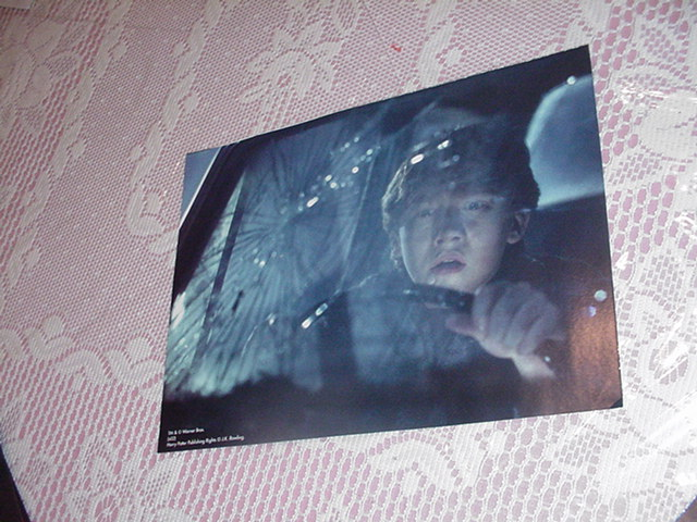 Harry Potter Movie Poster - Ron In Car 3