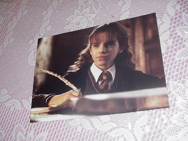 Harry Potter Poster - Hermione Studying 2