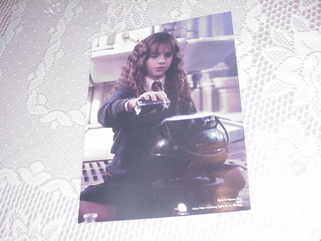 Harry Potter Poster - Hermione Studying 3