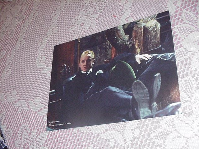 Harry Potter Poster - Draco Malfoy NEW 3