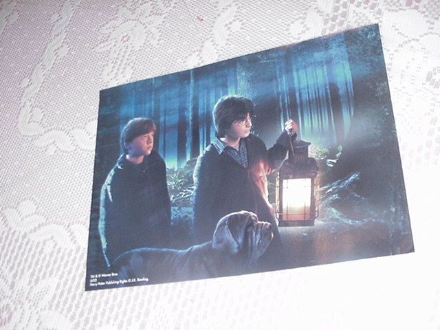 Harry Potter Poster - W/ Ron At Night NEW 3
