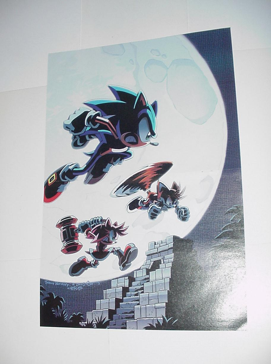 Sonic the Hedgehog Poster # 6 Tails Amy Rose