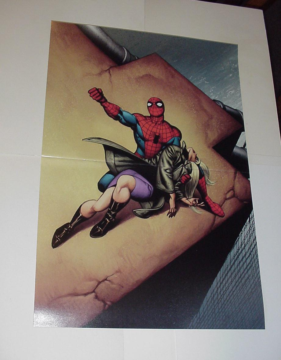 Spider-Man Poster #87 Death of Gwen Stacy Gil Kane