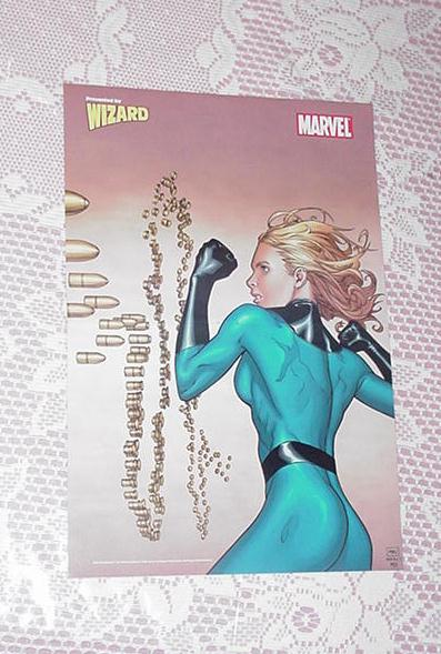 Invisible Woman Poster Steve McNiven Marvel Knight