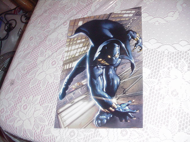 Black Panther Poster Mark Texeira No Logo