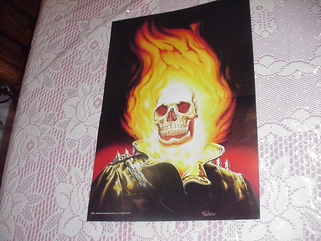 Ghost Rider Portrait Poster by Nelson
