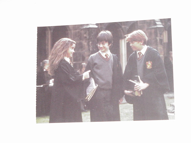 Harry Potter Ron & Hermione Poster 1 Great Gift