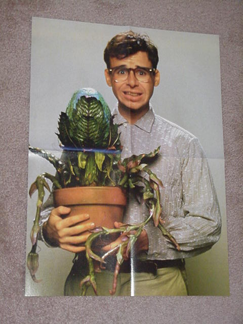 Little Shop of Horrors Movie Poster Seymour Audrey